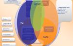 Структура личности: ум-душа-тело — психология