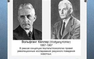 Вольфганг кёлер — психология