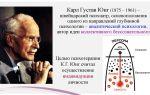 Карл густав юнг «психологическая теория типов» — психология