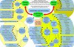 Позитив и конструктив — психология