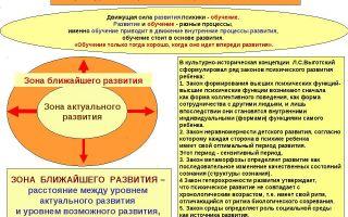 Культурно-историческая педагогика — психология