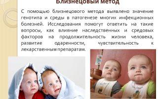 Близнецовый метод — психология