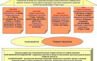 Теории научения — психология