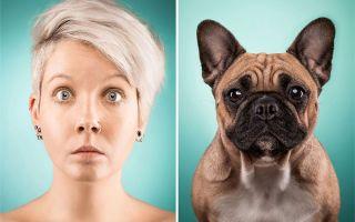 Эмоции у животных — психология