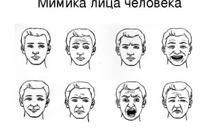 Мимика плачущего лица — психология