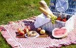 Едем на пикник — психология