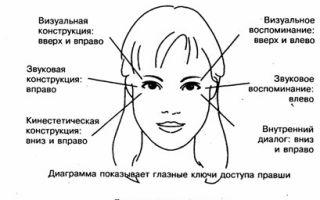 Глазодвигательные реакции — психология