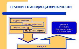 Трансдисциплинарность — психология