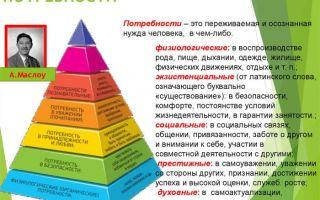 Предложение — психология