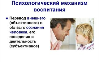 Внешний переводчик — психология