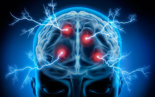 Нейрокибернетика — психология
