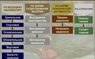 Я-послания: примеры — психология