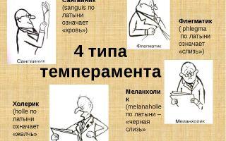 Упражнение «холерик» — психология