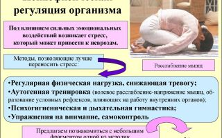 Психофизика — психология