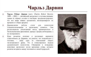 Чарльз дарвин — психология