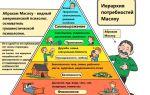 Физиологические и психологические потребности — психология
