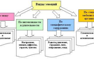 Классификация базовых эмоций по макдауэллу — психология