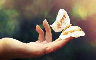 Удовольствие и благо — психология