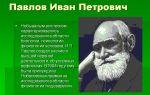 Павлов, иван петрович — психология