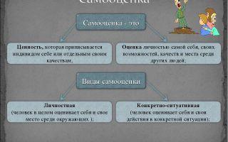 Бихевиоральное направление: миссия, видение, методы, терапия, эффективность — психология