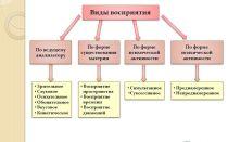 Виды восприятия и их характеристика в психологии
