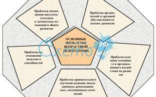 Работа с проблемой — психология