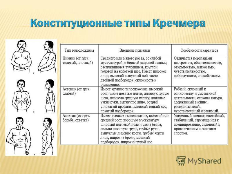 Астенический тип личности характер и описание