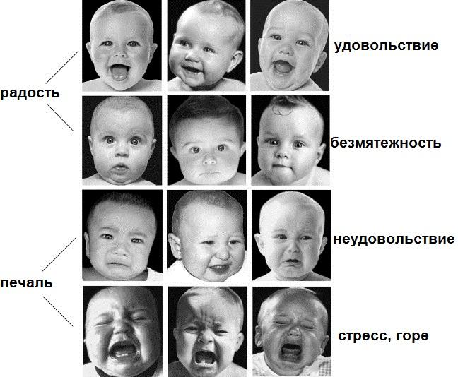 Виды эмоций и чувств - Психология для Всех