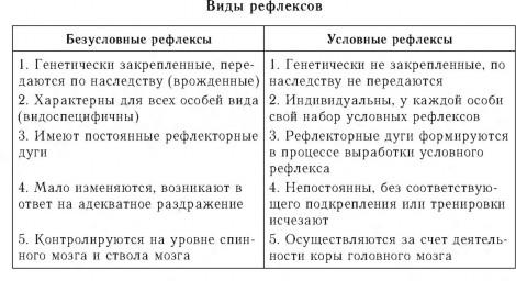 Безусловные и условные рефлексы доклад 4756